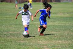 AFC Visayas 2