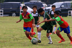 AFC Visayas 3
