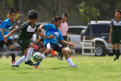 AFC Visayas 6